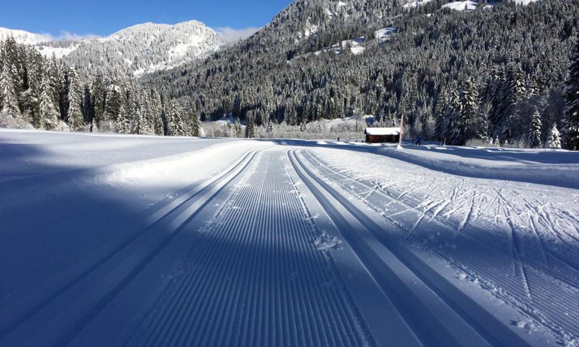 Skilanglaufschule Olympia